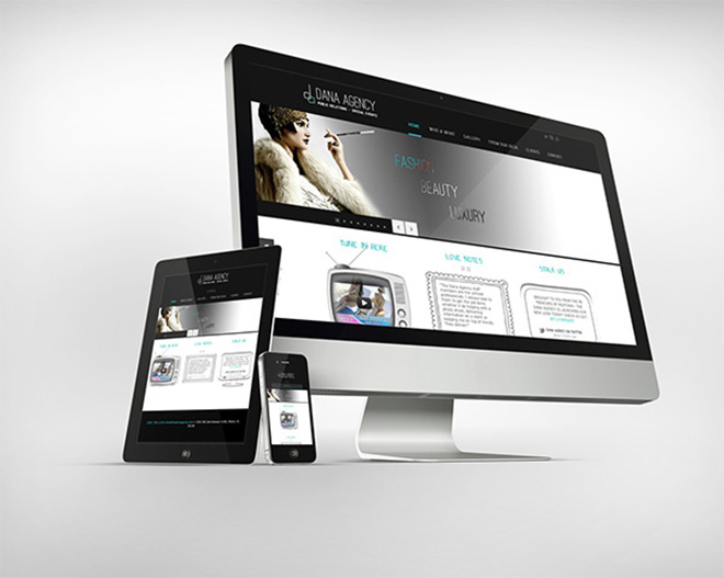 Dana Agency website v2